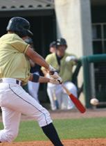 Compex Baseball Training
